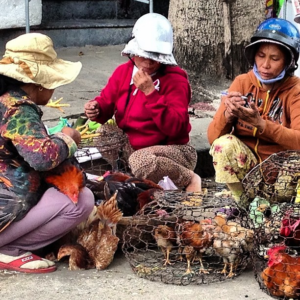 Some ladies counting their chickens at the market in Hoi An, Vietnam