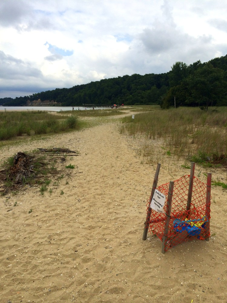 A bin of beach toys for sharing, with the fishing pier in the background, at Flag Ponds Nature Park