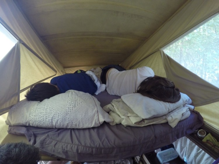 J and Coconut sleeping on the top bunk of Wesley after an evening downpour washed out the tent Maya planned to sleep in