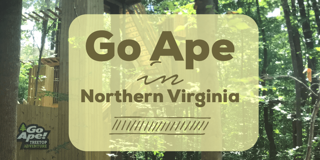 Go Ape in Northern Virginia