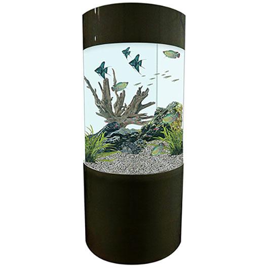 fish tanks aquariums for