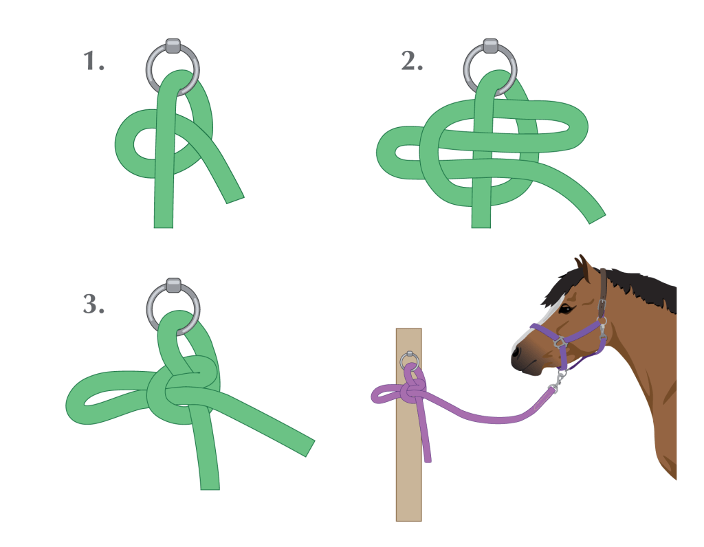 Quick Release Knot