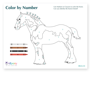 ColorbyNumber