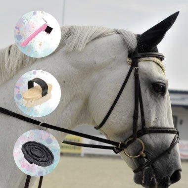 allpony groom horses