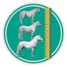 Measure horses icon