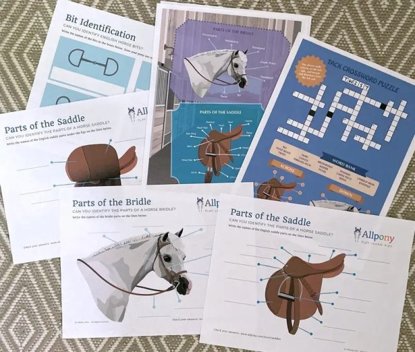 horse tack activity download