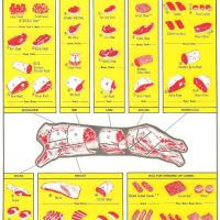 Retail Cuts of Veal: Where They Come From and How to Cook Them (Chart)