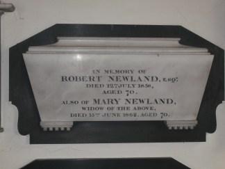 Newland (3)