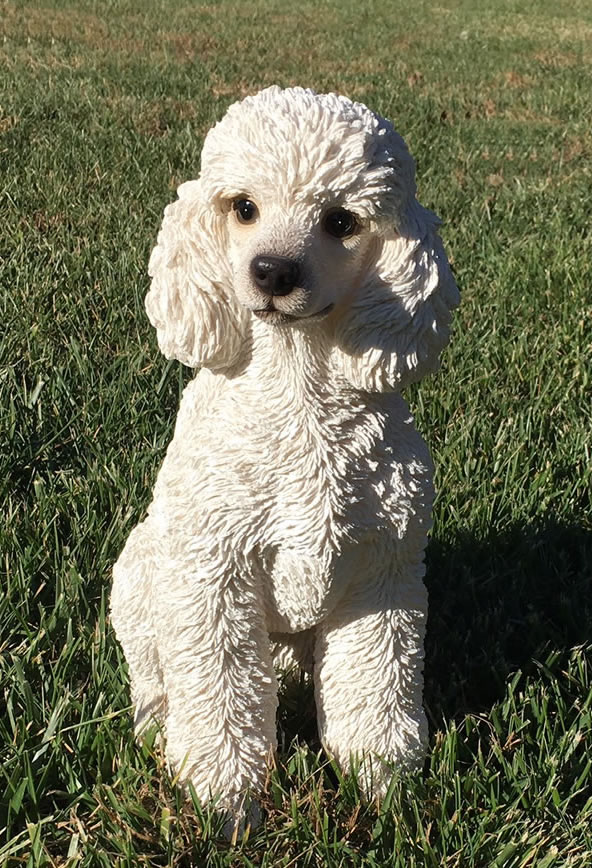 White Toy Poodle Dog Statue 125H NaturesGalleryAll