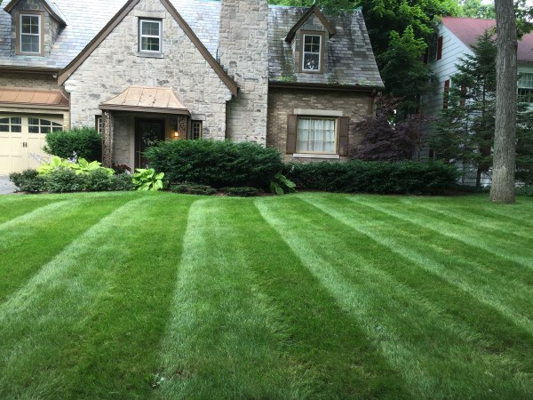 weekly lawn and landscape maintenance
