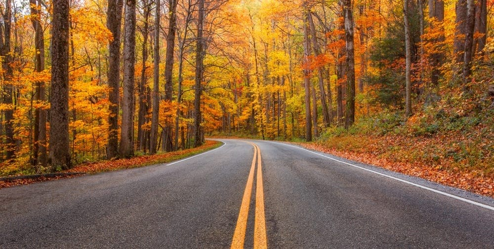 Fall In The Smokies Wallpaper 4 Things To Do During Your Fall Vacation At Our Pigeon