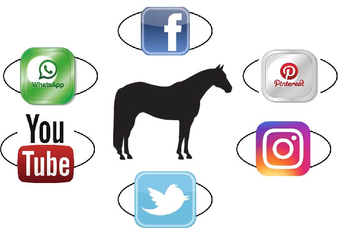 Horse with Social Media Icons