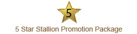 5 Star Stallion Promotion Package Logo