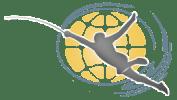 DE International allstar fencing Camp Logo