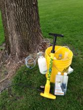 Tree Injections Prevent EAB In Ash Trees