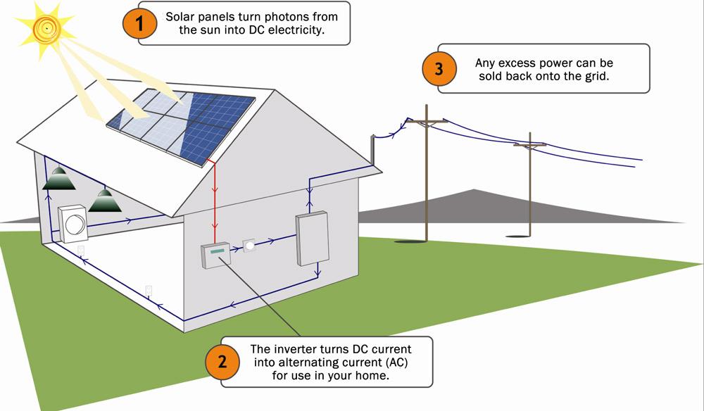 Santa Cruz Solar Energy Systems Allterra Solar