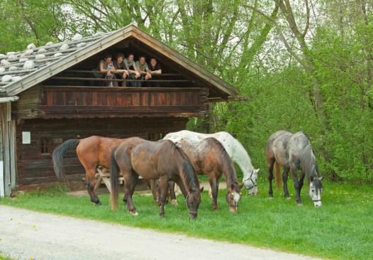Enspannter Abend im Bauernhausmuseum in Massing