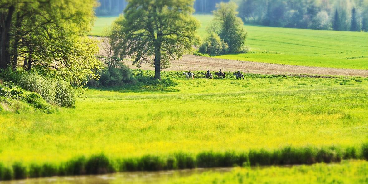 Ausreiten in der Nähe von München