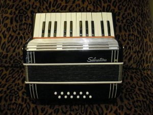 Leopard Accordion