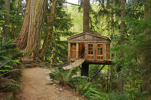 treehouse in the Seattle