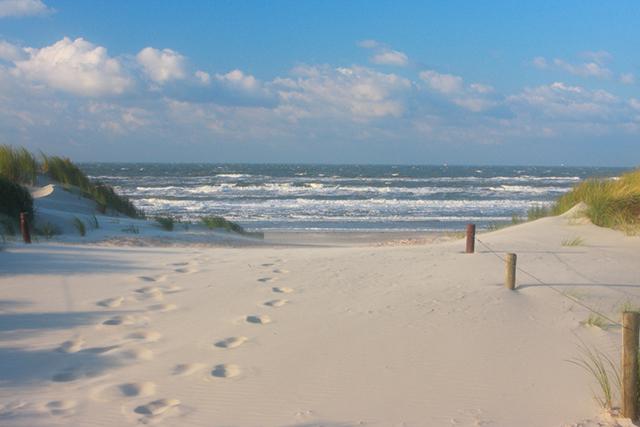 Ameland Beach Netherlands