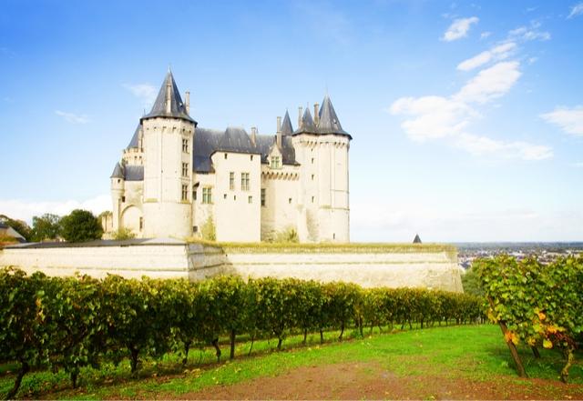 France Château de Saumur