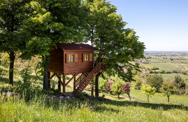 Top airbnb treehouses