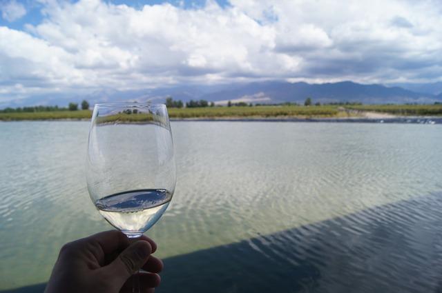wine vacation mendoza