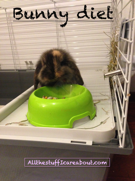 bunny_diet_allthestufficareabout.com_