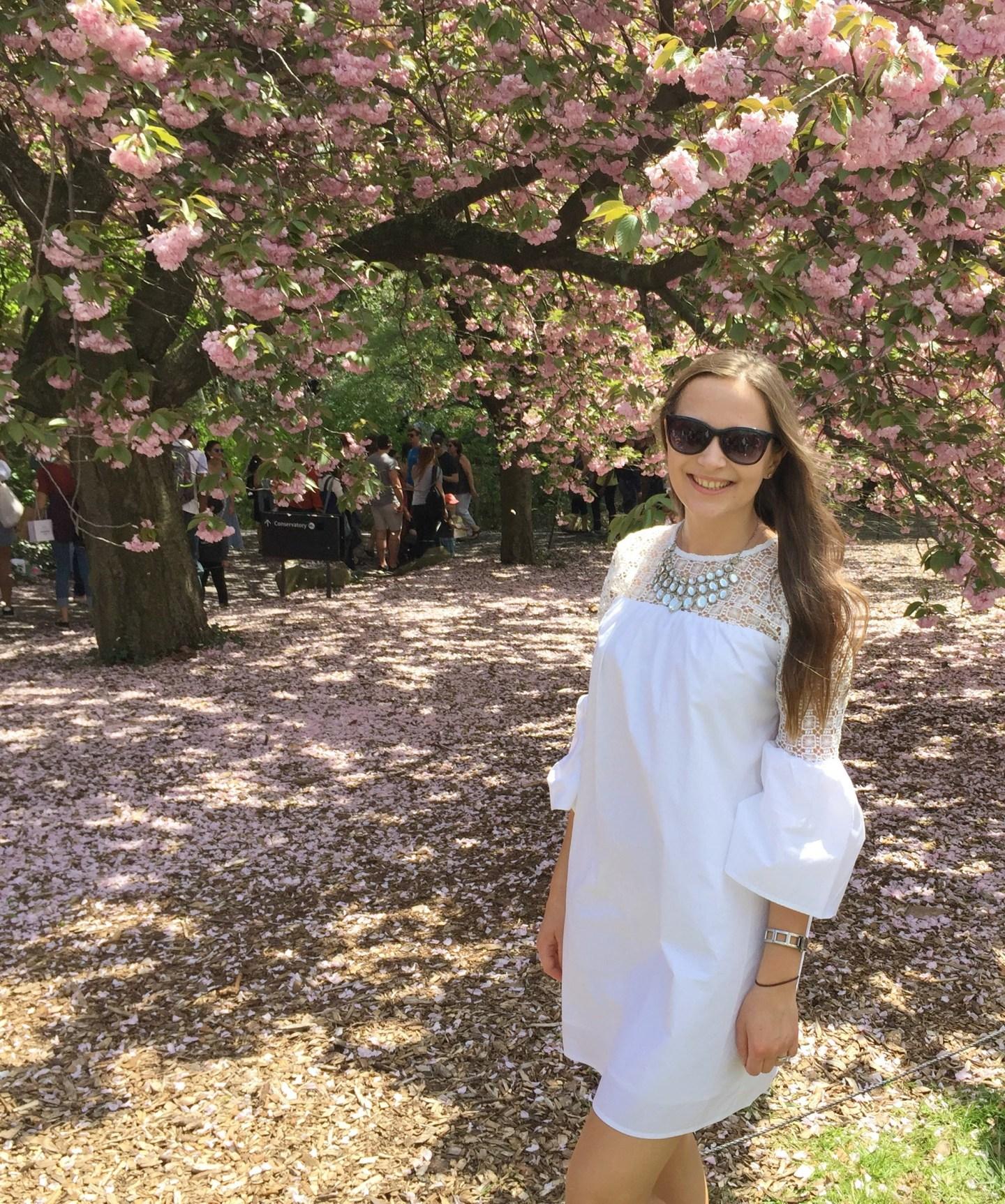 Brooklyn botanical garden cherry blossom sakura matsuri NYC