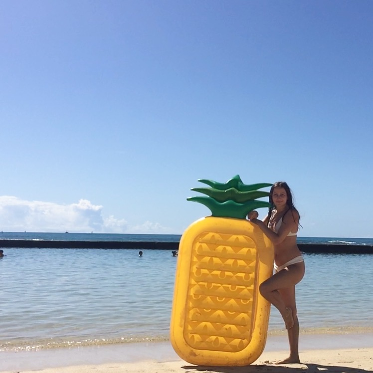 Pineapple Floatie Hawaii All the stuff I care about