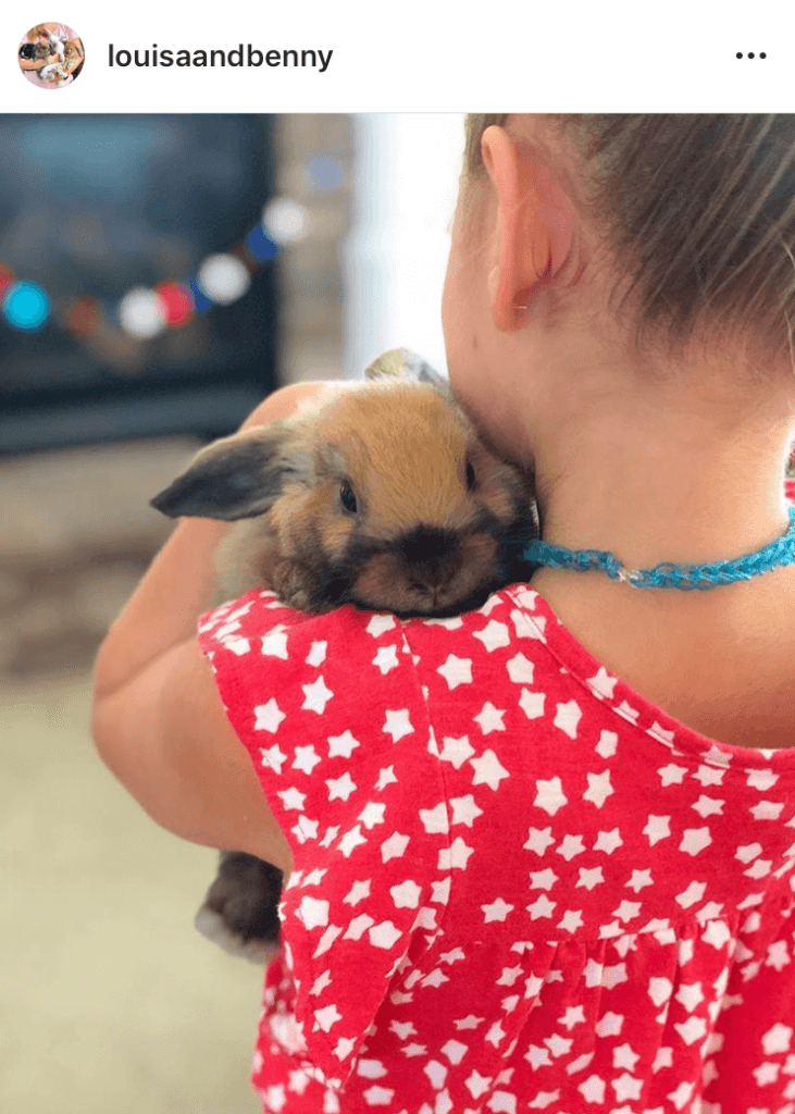 bunny mum bunny mama bunny mummy allthestufficareabout louisandbenny