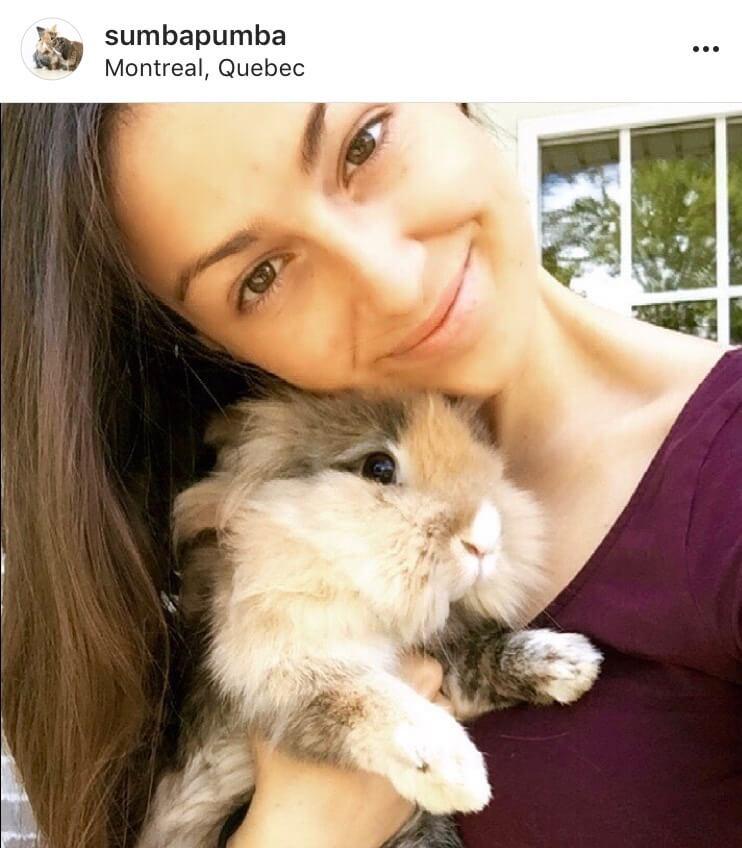 bunny mum bunny mama bunny mummy allthestufficareabout sumbapumba 2