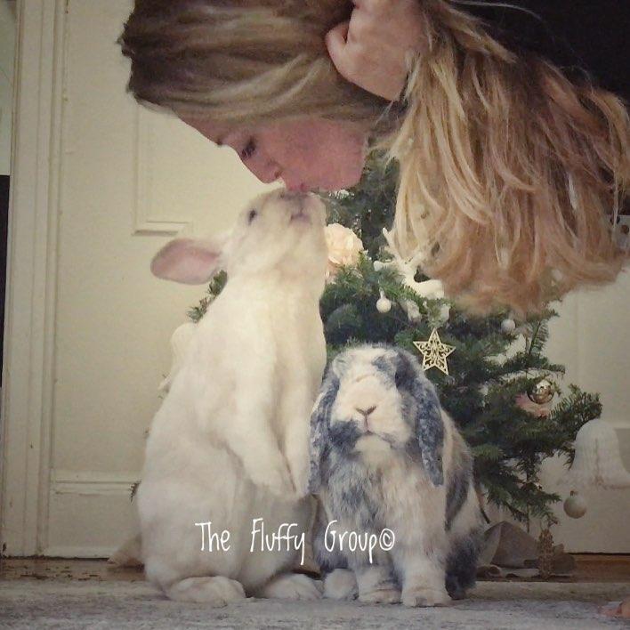 bunny mum bunny mama bunny mummy allthestufficareabout sumbapumba thefluffygroup 1