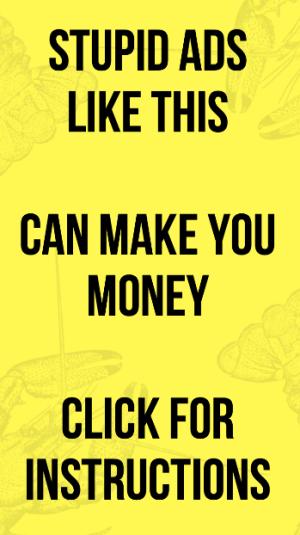 stupid ads make money