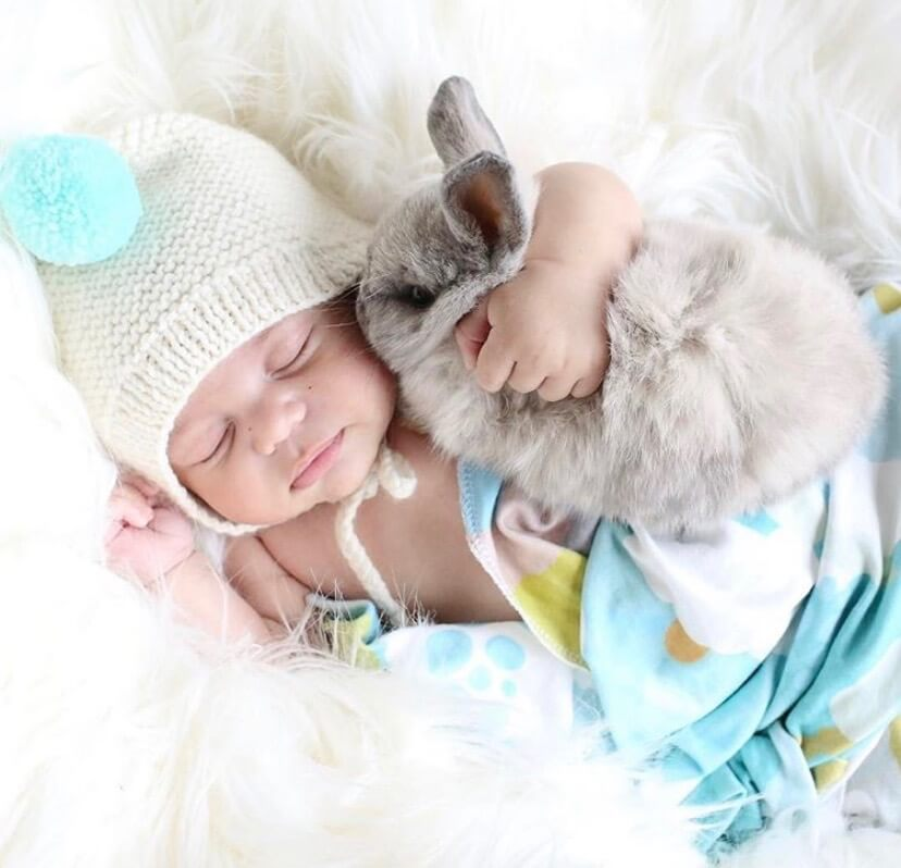 babies and bunnies, baby and bunny, bunny and baby, bunny and baby photoshoot, 19 easy photo ideas for baby and bunny, bunny and baby photos, little bunny, holland lop, bunnies and babies that will warm your heart #babybunny #babyandbunny #bunnyandbaby #bunnyphotoshoot #bunnyphotoshootideas #babyphotoshoot #babyphotoshootideas