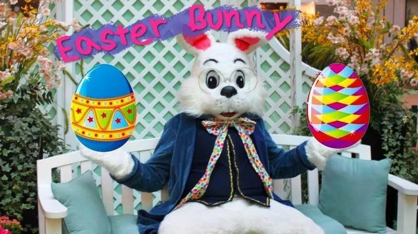 Boulder Area Easter Bunny