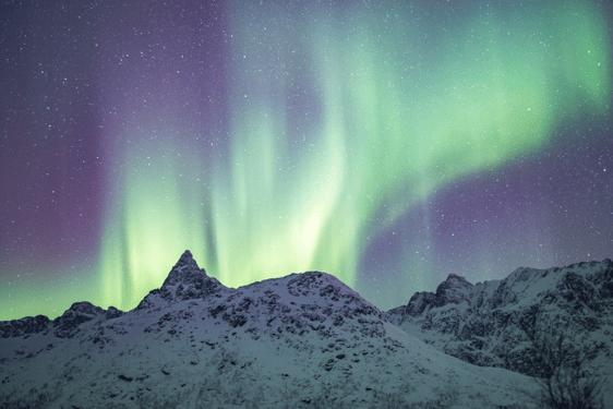 amazon aurora ascendant how