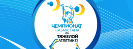 kazakh nationals logo
