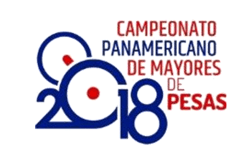 2018-Pan-Ams-Logo