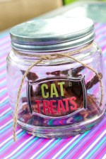 CatTreats-4