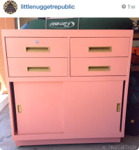 Painting Filing Cabinets with Lacquer {Peach and Coral ...