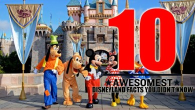 Photo of Top Ten Shocking Facts About Disney