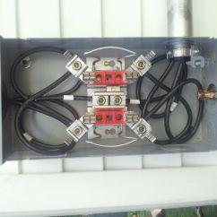 Electric Meter Box Wiring Diagram Dicot Stem 16 Images