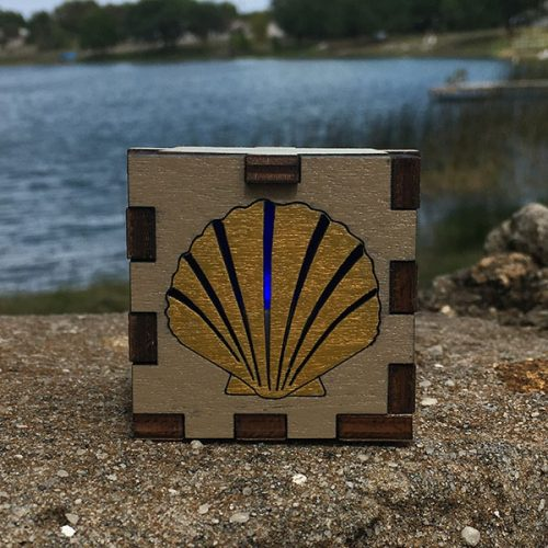 Shell in Nature