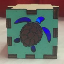 Sea Turtle LED Gift Box Blue