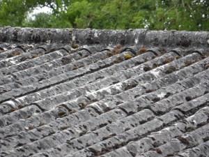 allwastedemolitionimage - asbestos garage roof 7