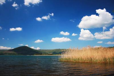 Lago di Vico alberghi agriturismi hotel e BB vicino al