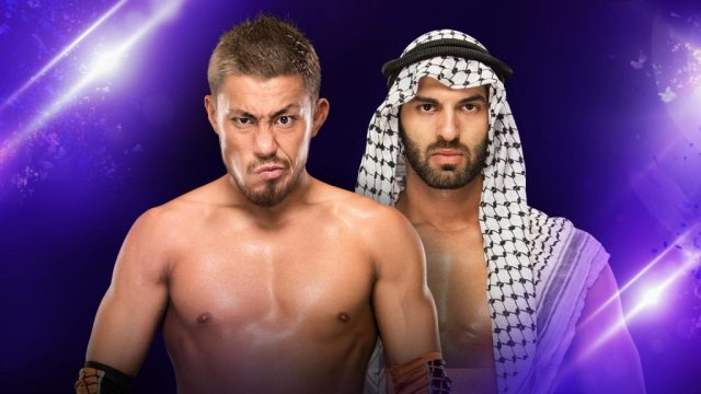 Watch WWE 205 Live 8/1/2017 Full Show Online Free