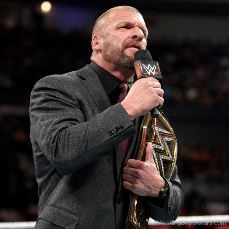Amazing Animal Wallpapers Wwe Triple H Page 40